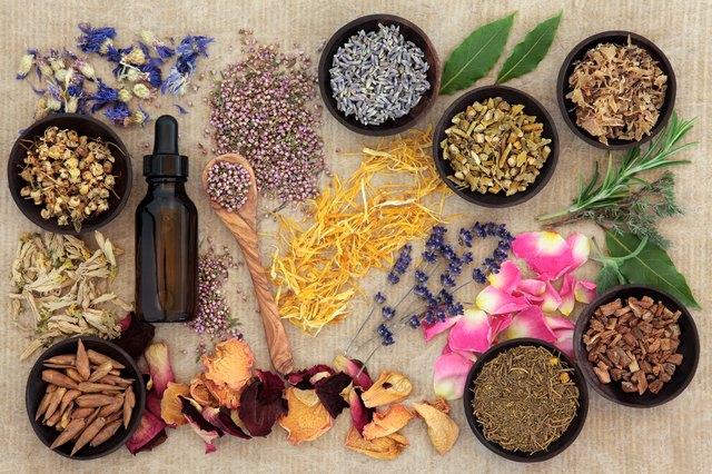 Diferenta dintre naturopatie si homeopatie