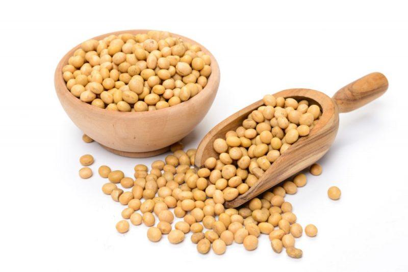 Ce nutrienti contine soia?